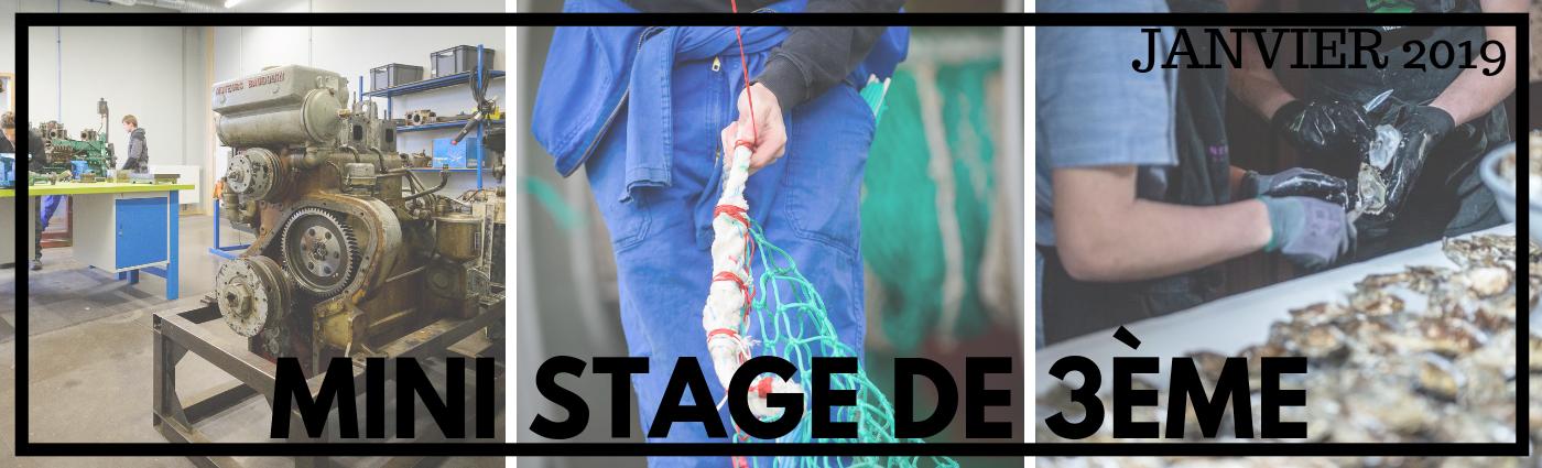 Stages découverte 3ème